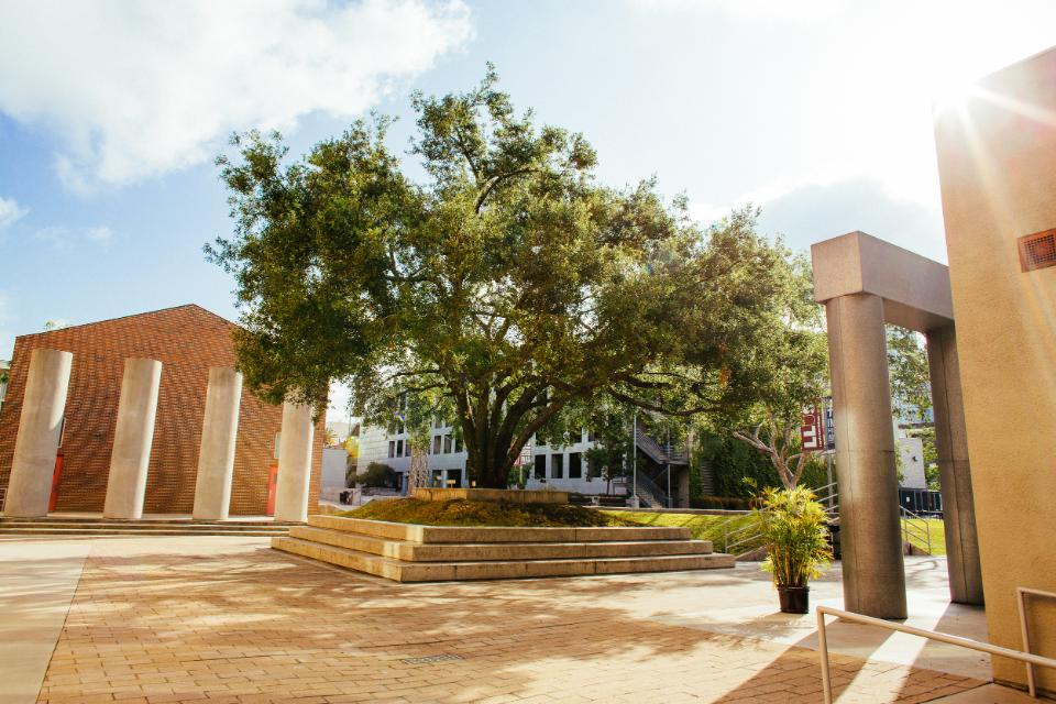 Academics Page Image - campus photo - Donovan